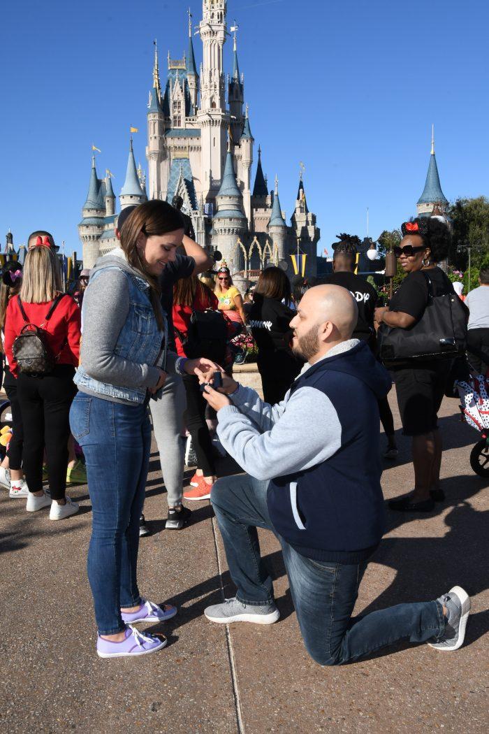Proposal Ideas Walt Disney World - Magic Kingdom