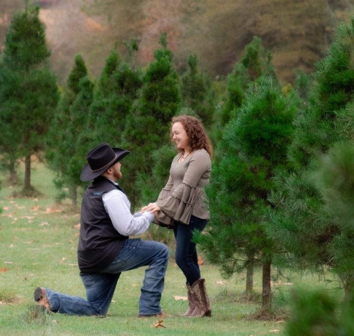 Marriage Proposal Ideas in Double Creek Farm Livingston, TX
