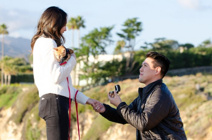 Marriage Proposal Ideas in Point Dume, Malibu, CA