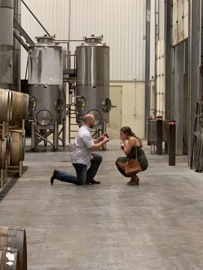 Wedding Proposal Ideas in The Duchman Family Winery