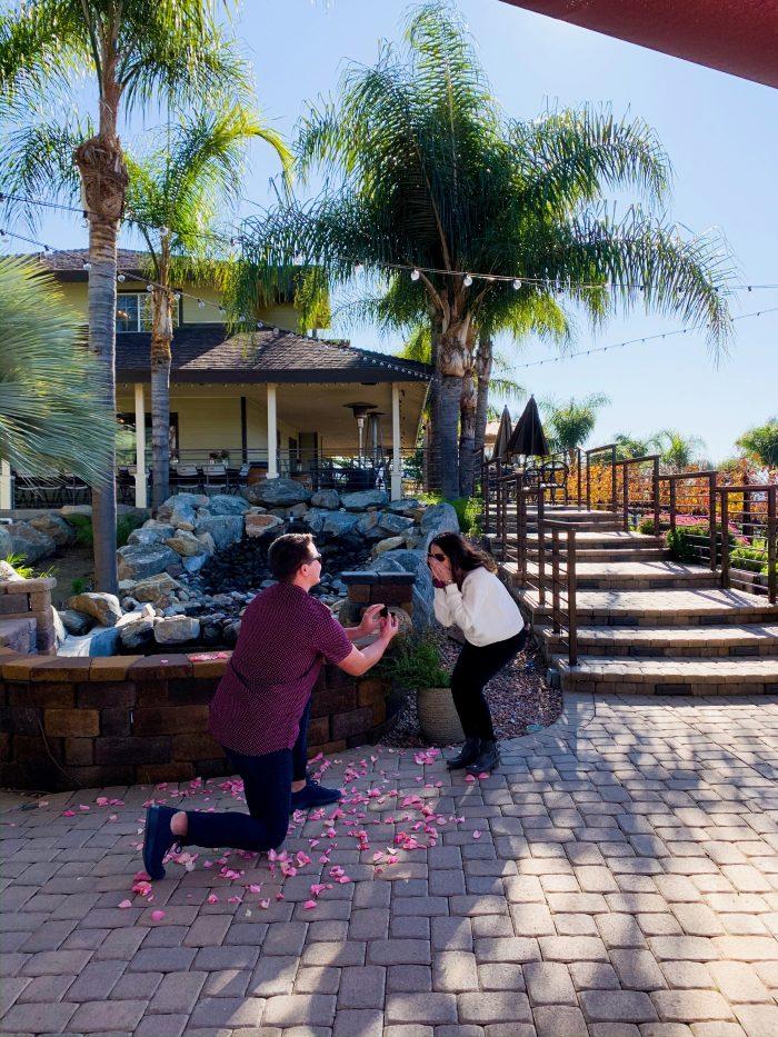 Proposal Ideas Chapin Winery, Temecula, California