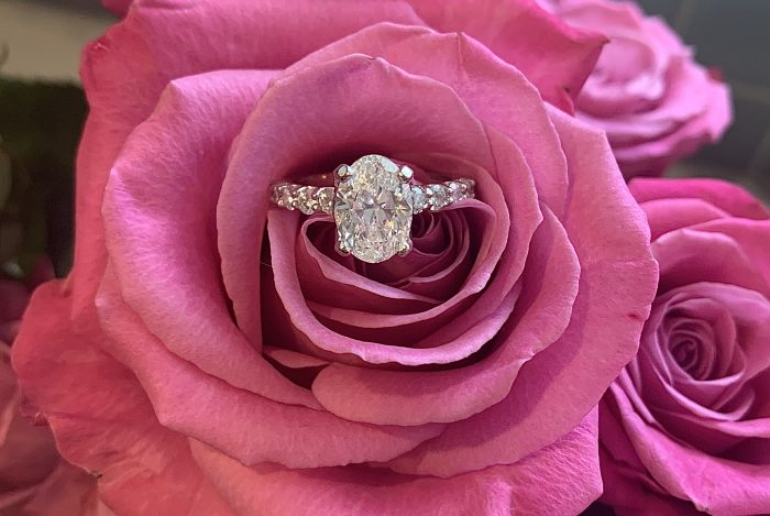 Marriage Proposal Ideas in Newburgh, IN