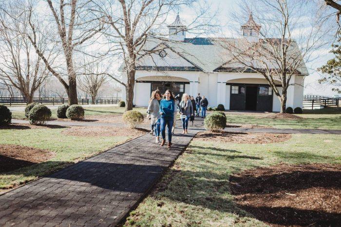 Taylor's Proposal in Spendthrift Farm in Lexington, Kentucky