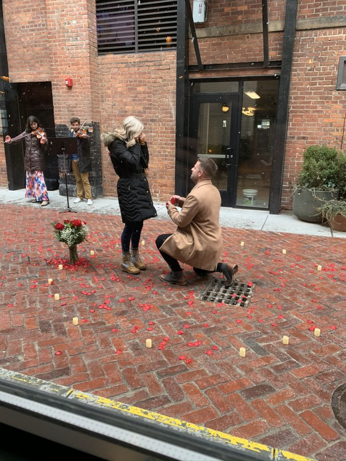 Audrey's Proposal in Detroit Michigan