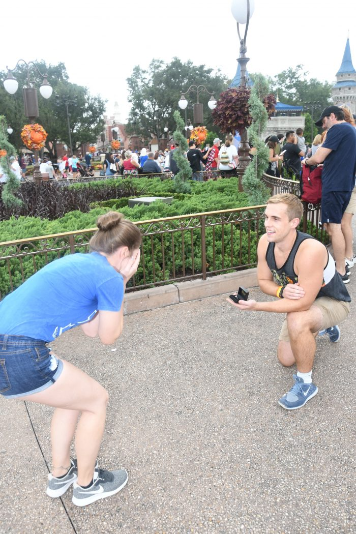 Wedding Proposal Ideas in Walt Disney World, Magic Kingdom