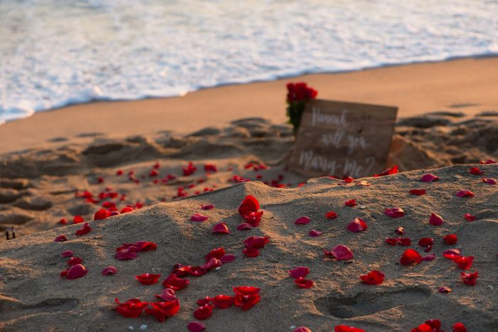 Hannah's Proposal in Sunset Beach, CA
