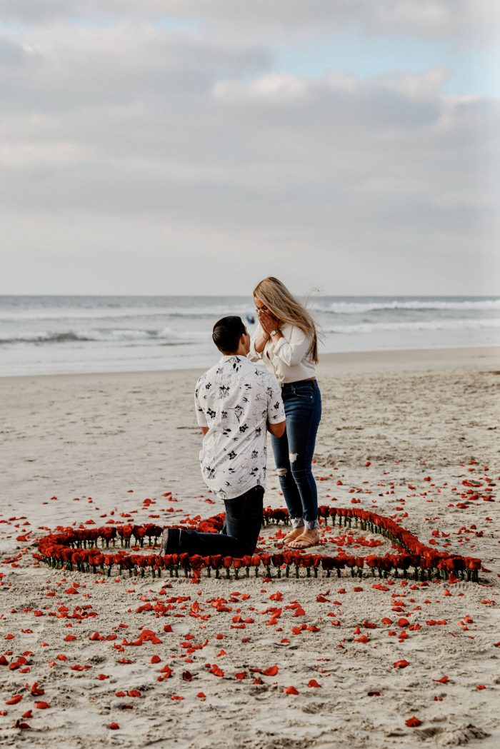 Proposal Ideas Del Mar Beach, California