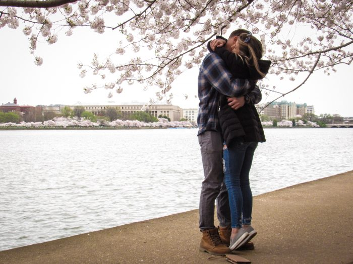 Marriage Proposal Ideas in DC Cherry Blossoms