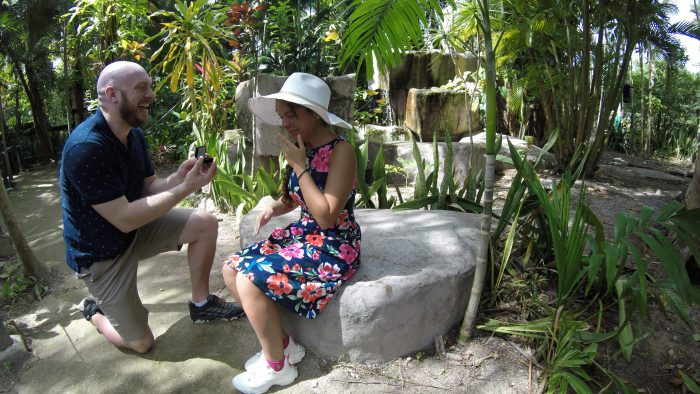 Rosalie and Shane's Engagement in Ardastra Gardens and Zoo in Nassau, Bahamas