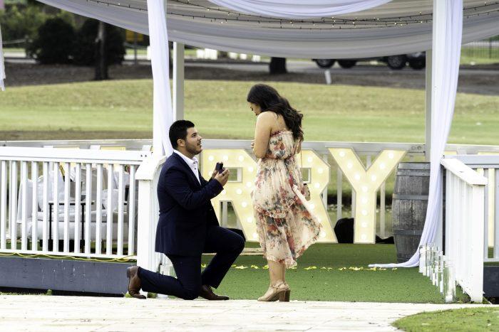 Wedding Proposal Ideas in Hunter Valley, Australia