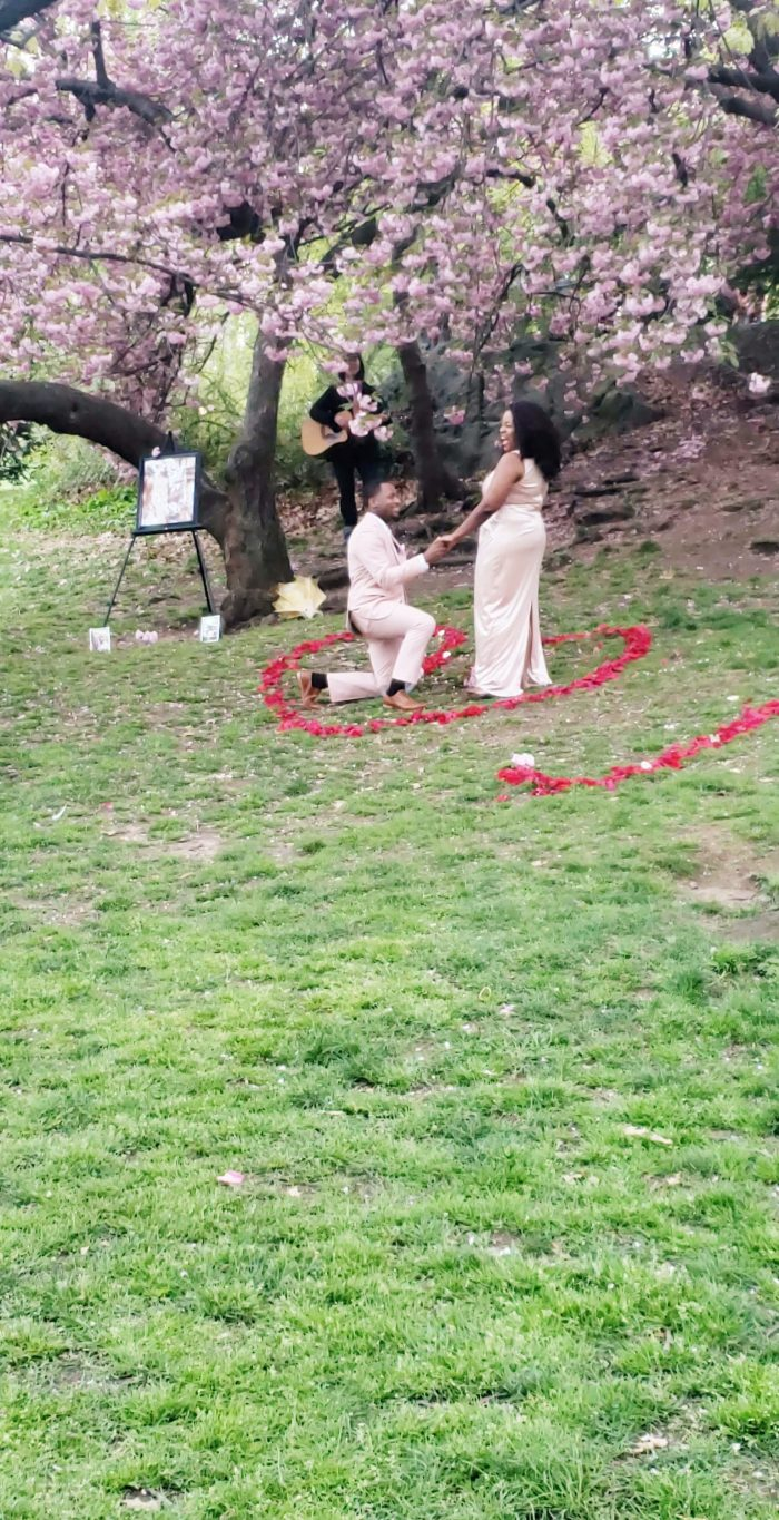 Marriage Proposal Ideas in Central Park