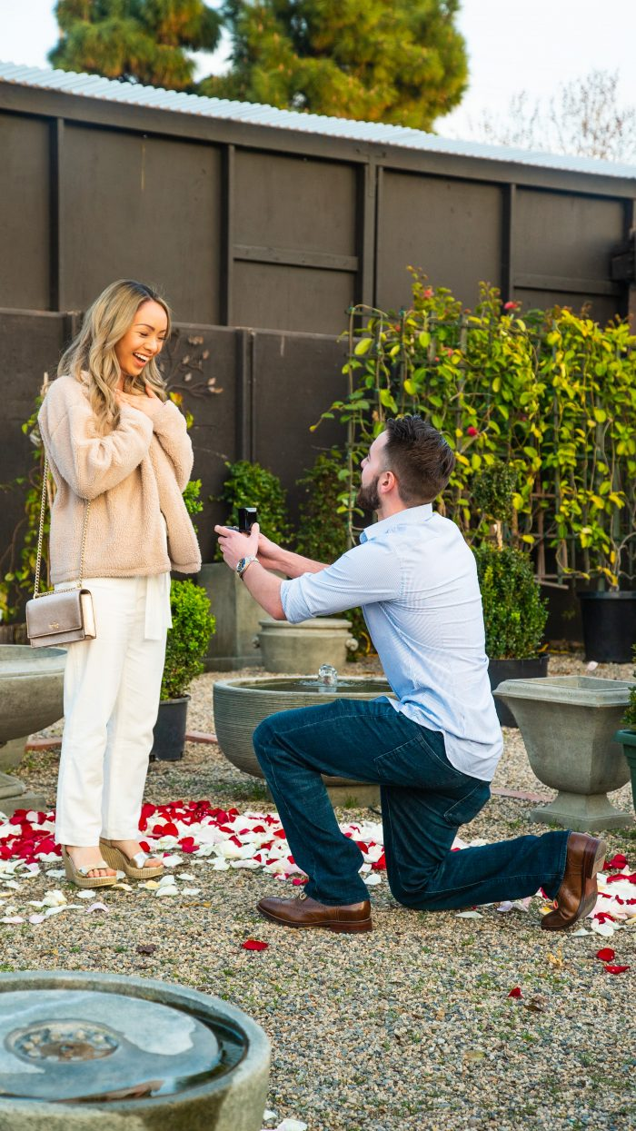 Wedding Proposal Ideas in Roger's Garden