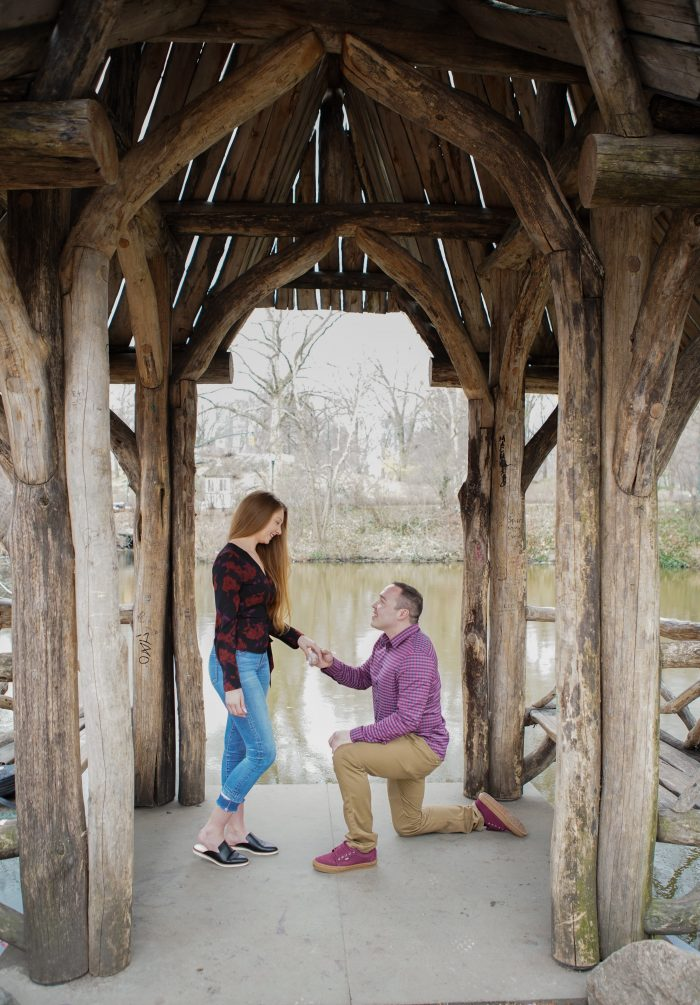 Wedding Proposal Ideas in Central Park, NY