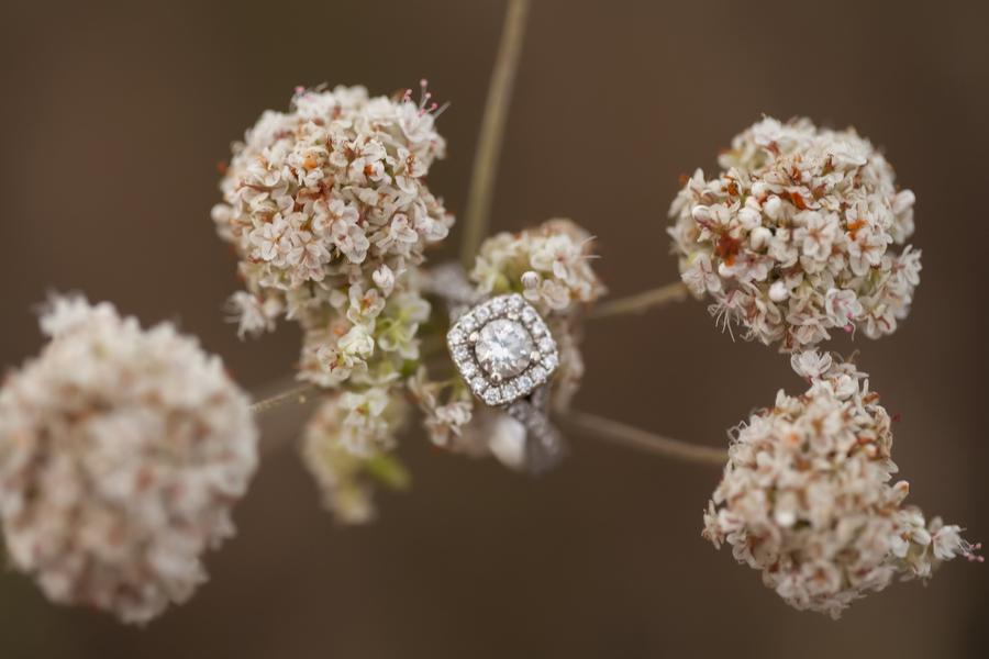 Image 32 of 38 Amazing Engagement Ring Photos