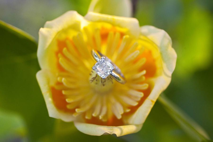 Engagement_Rings_Love_Tree_Studios_0088_low