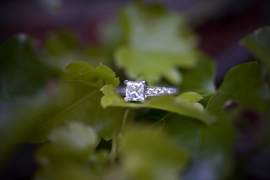 Engagement_Rings_Love_Tree_Studios_66_low