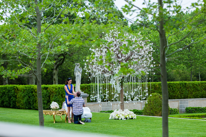 Image 14 of Todd and Jenny's Fairy Tale Proposal