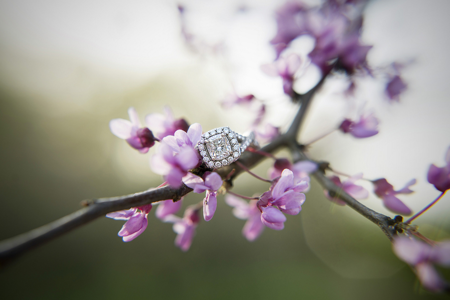 Engagement Ring Photography Ideas
