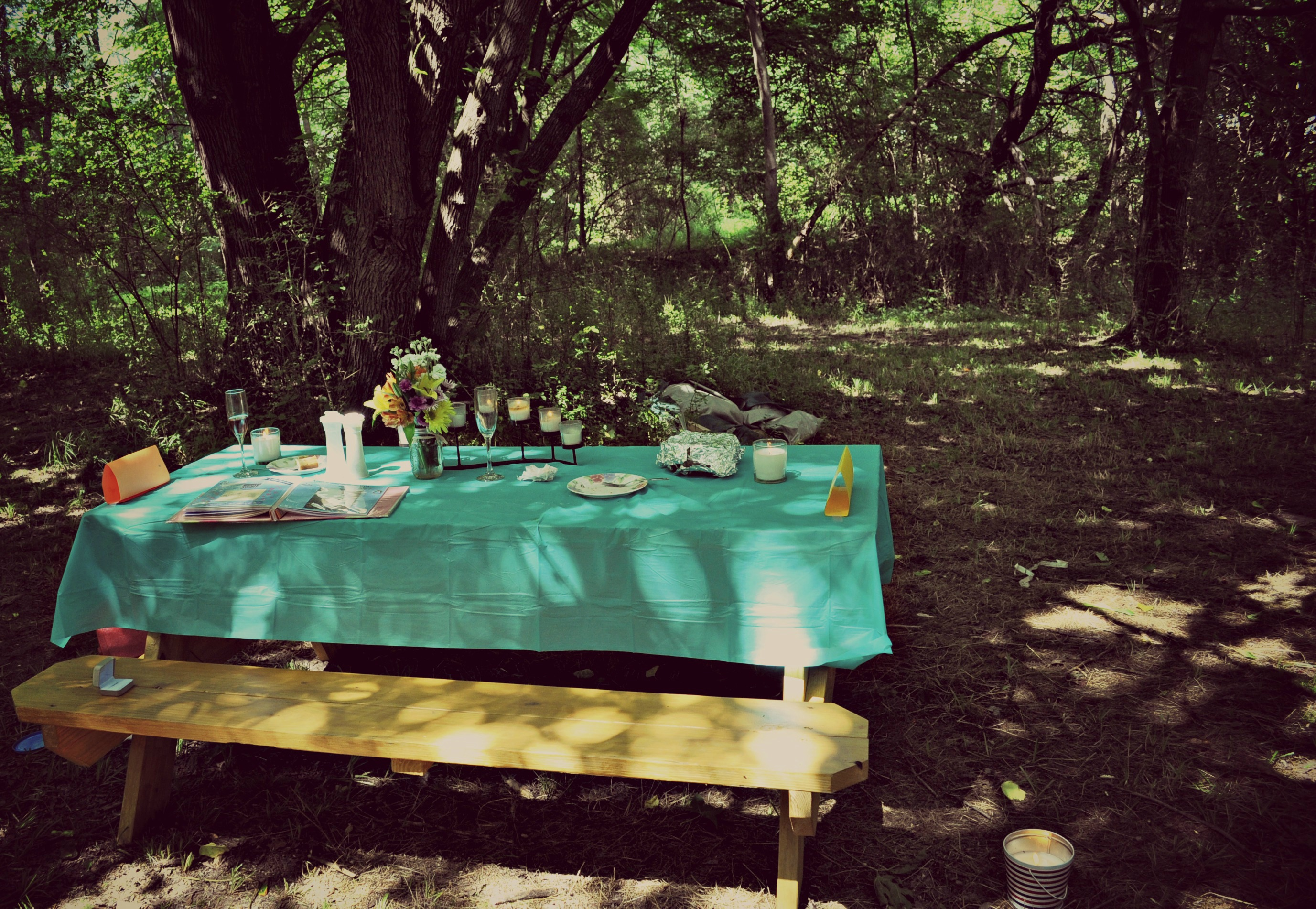 Picnic Proposal Idea