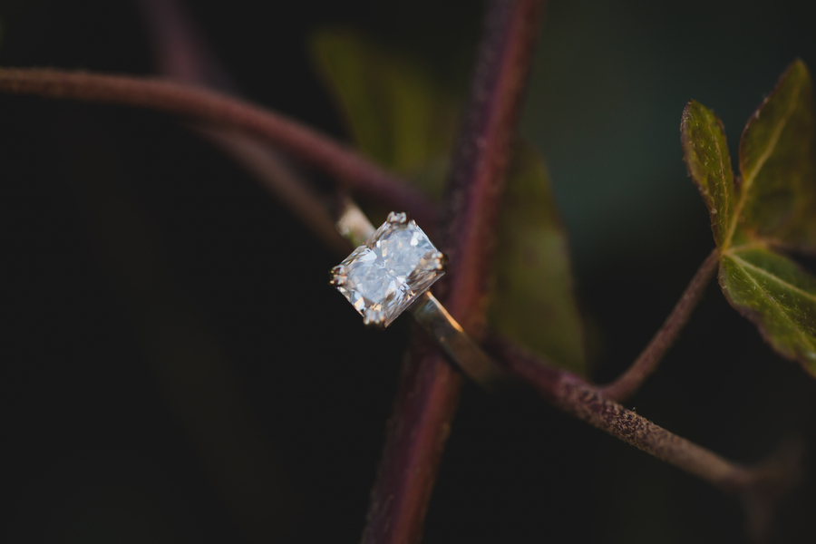 Rings_Rings_Casey_Hendrickson_Photography_IMG3494_low