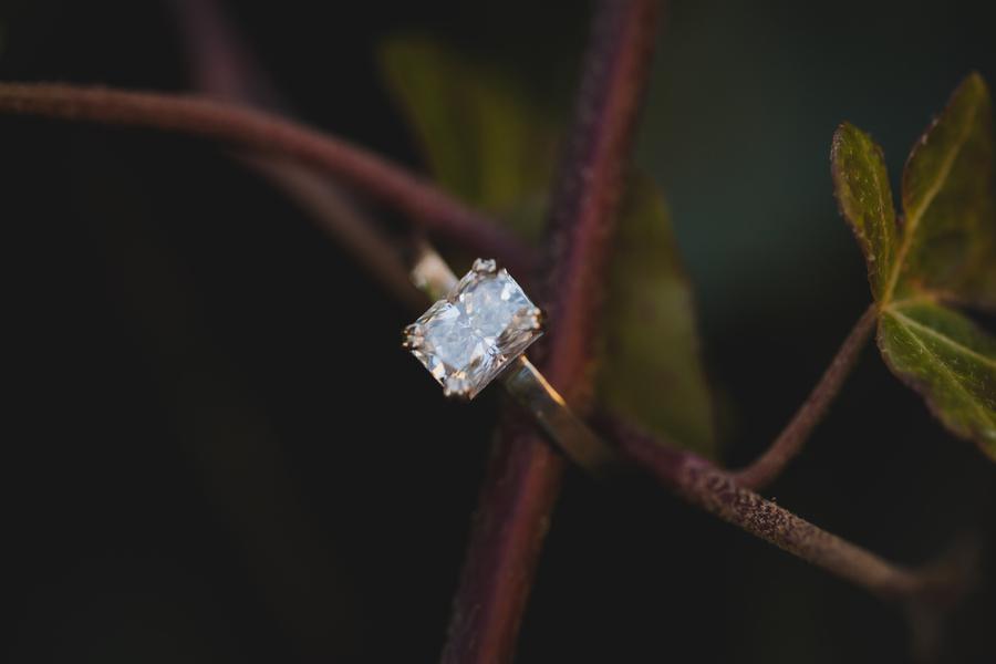 Image 23 of 38 Amazing Engagement Ring Photos